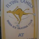 J'ai testé : la patinoire du Villagio  dans enfant img_5706-150x150
